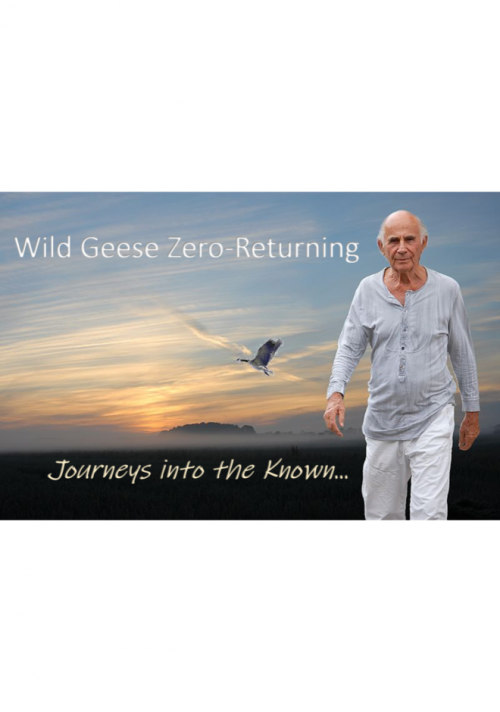 Wild-Geese-Zero-Returning-cover-front